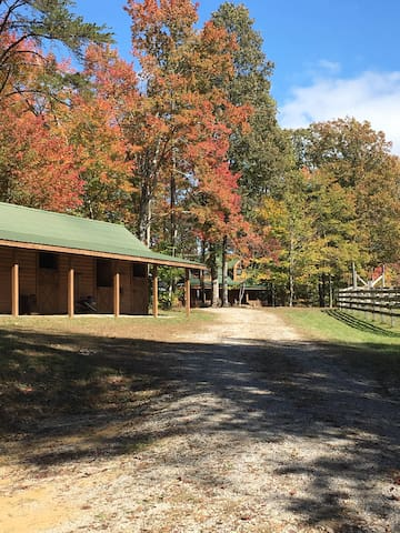"""The """"Hickok"""" Cabin...Come Relax, Ride, Hike & More"""