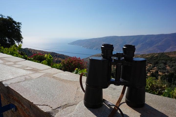 Aegean View Kochylos