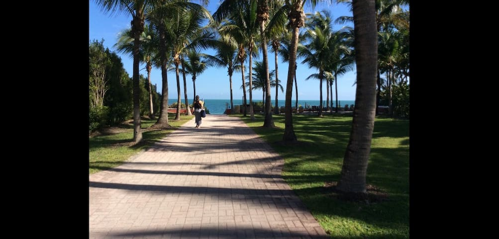 Beautiful Beach Town-Island Paradise - Key Biscayne