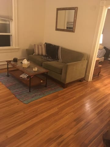 Cozy, quaint central apartment in fisher park