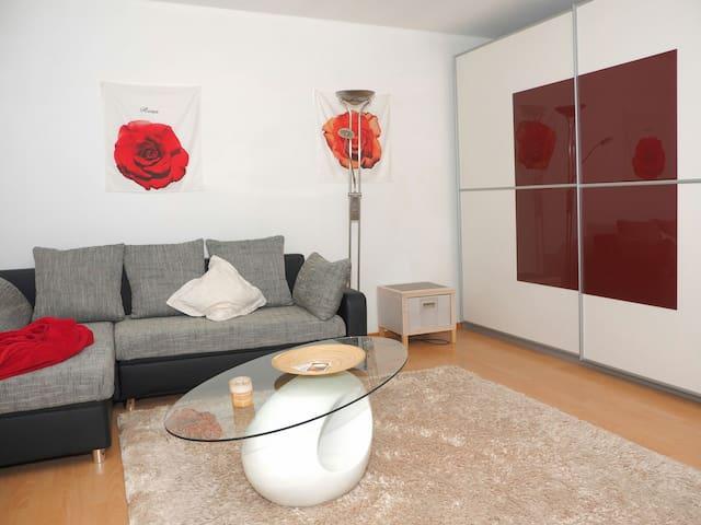 Heller separater Raum im Grünen - Nehren - House