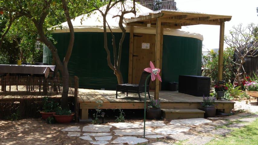 luxury tent in the desert - Ein HaBesor - Telt