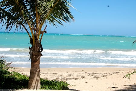 Isla Verde by the Beach II