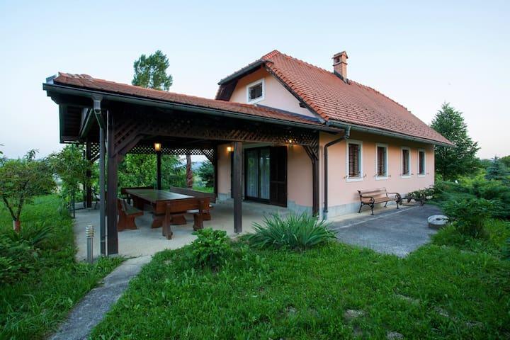 Mladen's cottage  on 12000 m2  (Mladenova Hiža)