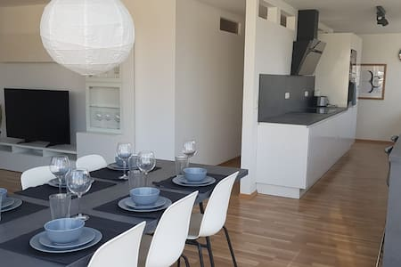 Beautiful large apartment with roof terrace