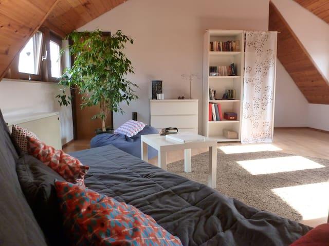 Gemütliche Wohnung im Zentrum von Ulm - Ulm - Apartmen