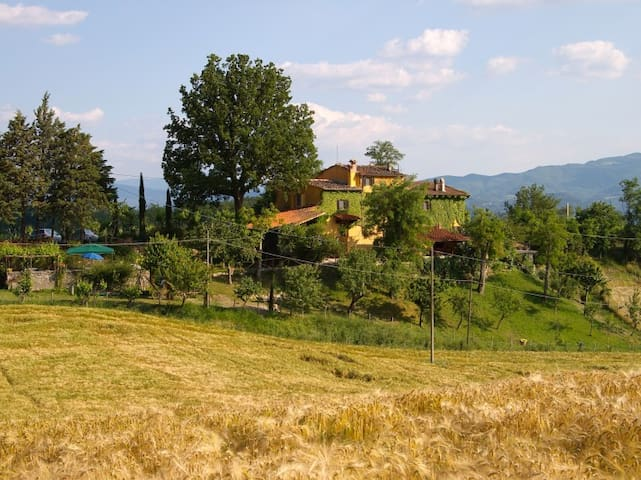 Le Due Volpi, country house with swimming pool