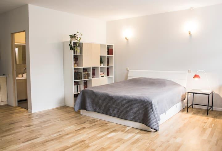 Mini Home Bookshop Studio S3 in Naujamiestis