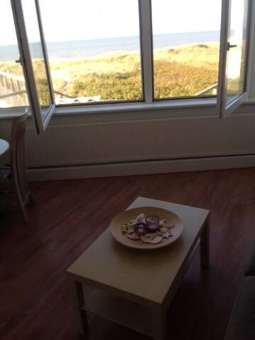 Studio met mooi uitzicht op zee en duinen!