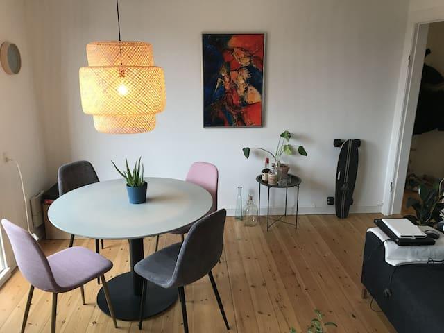 Hyggelig lejlighed i hjertet af Odense