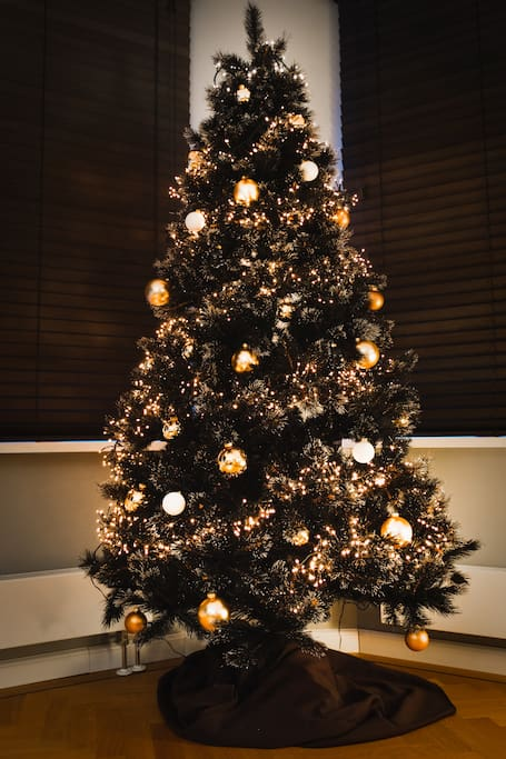 In December-January there is this beautiful X-mas tree in my livingroom