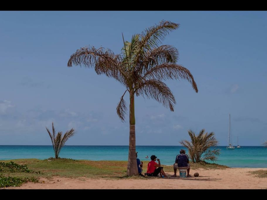 Typical beach scene in front of apartment, beautiful turquoise sea. Breathtaking!!