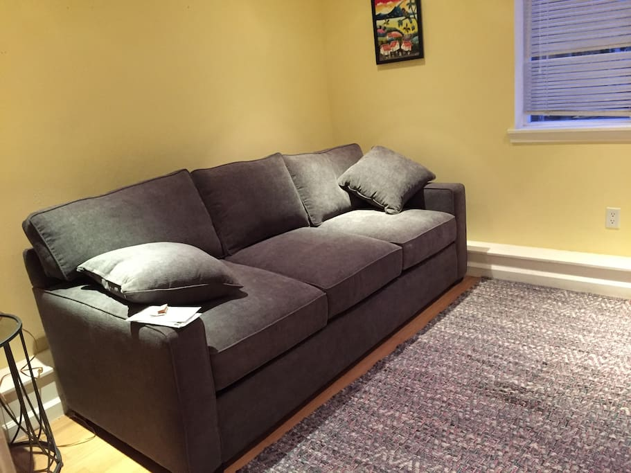 Pull-out couch and tv area