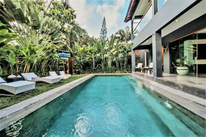 Spectacular 8mtr x 4mtr Pool and gardens of Villa Bellini's grand 5 bedroom/10 guest villa