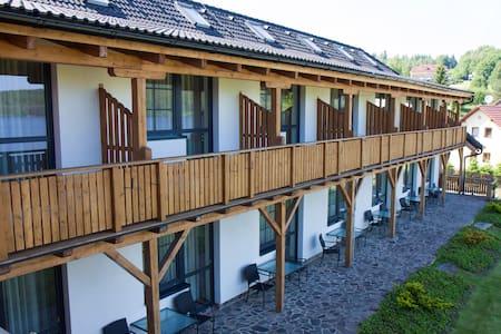 Hotel Albatros Přední Výtoň - Přední Výtoň