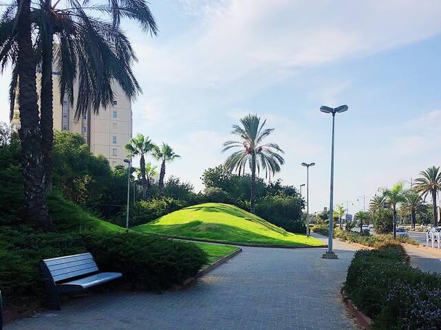Аэропорт,Тель-Авив,море.