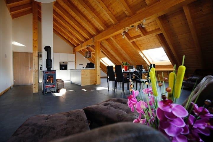 Exklusiv-Ferienwohnung 130 qm Neu 2017 - Langenweißbach - Daire