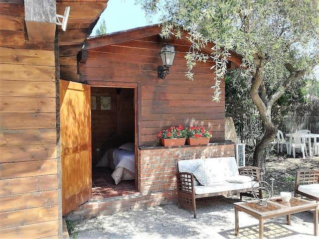 L'Ulivo di Sara cottage with garden in Portorosa