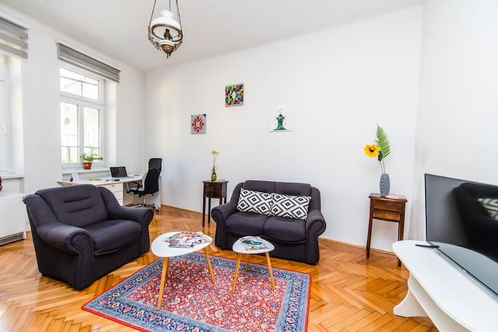 Bright and Sunny Apartment in The City CENTER!