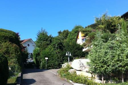 Villa Weitblick - Privatzimmer in Dornach - Dornach