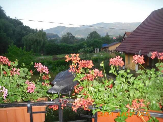 Ferienhaus  oder Zimmer in Rumänien zu vermieten - Tălmaciu - Casa