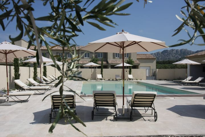 Luxurious gite with heated pool in the Alpilles, 6 persons