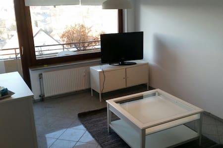neu renovierte Wohnung im Zentrum von Heilbronn - เฮลิบรอนน์