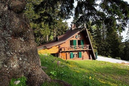 Chalet Alpinka 2