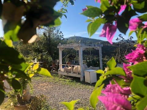 Paradise en Ibiza