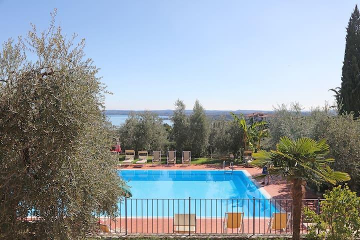 Strepitosa vista lago circondata da oliveti.