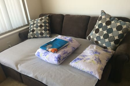 Clean Modern Apt comfortable Sofabed - Falls Church