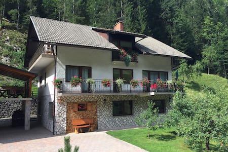 Cosy double room on farmstay Čerček in Solčava