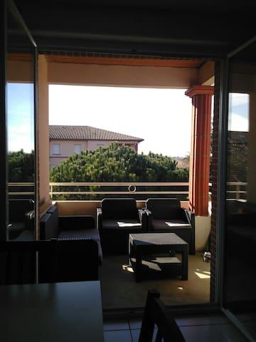 Appartement calme, parking, piscine - Toulouse - Appartement