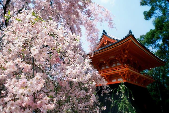 【Kyoto/4BR】10min to Kiyomizu & Gion - Kyoto higashiyama-ku tokiwatyo - Дом