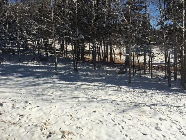 """""""Bugling Elk"""" 3 bd/rm, 2.5 bath Ski Cabin; 2 acres - Angel Fire - Hus"""