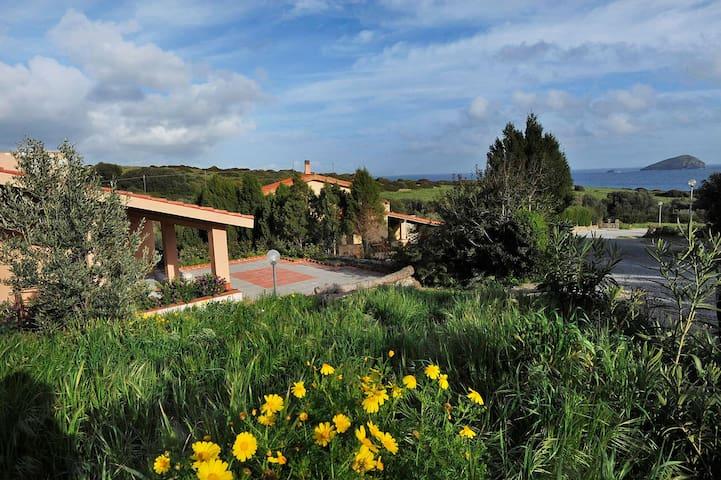 VILLA  BILOCALI in Sardegna vista mare 16 A - Peonia Rosa - วิลล่า
