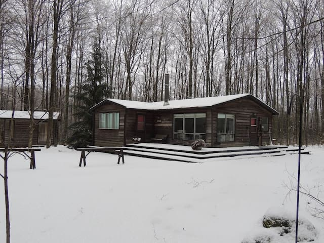 Cabin on 25 Exclusive Acres in Ontario Ski Country