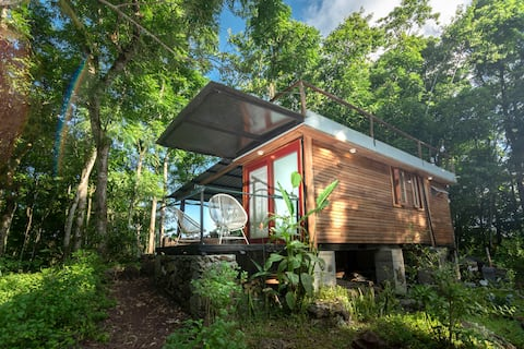 Tiny house surrounded by a cedar forest!