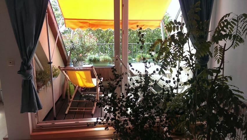 Cosy Sunnyside Room with Balcony