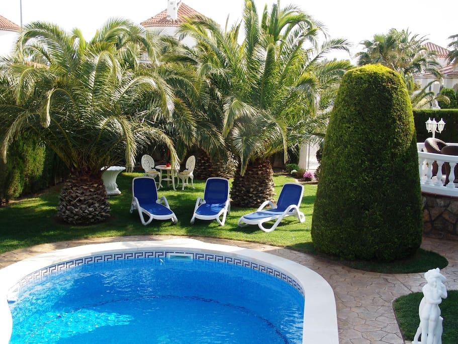 Pool und Garten mit Liegen und Palmen.
