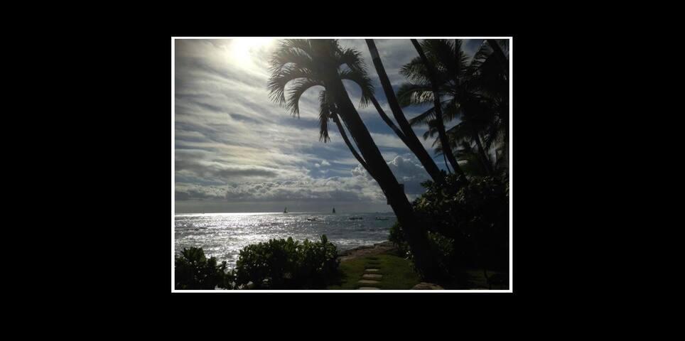 Diamond Head Paradise Dream Location Ocean Front
