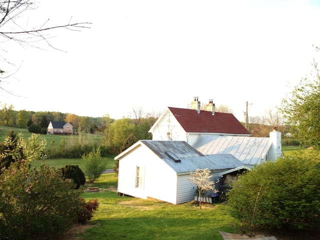 View of the homestead and guesthouse from the backyard.