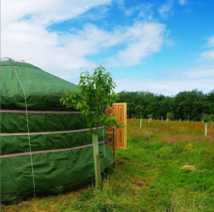 Back to Nature Yurt Experience at our Eco Retreat