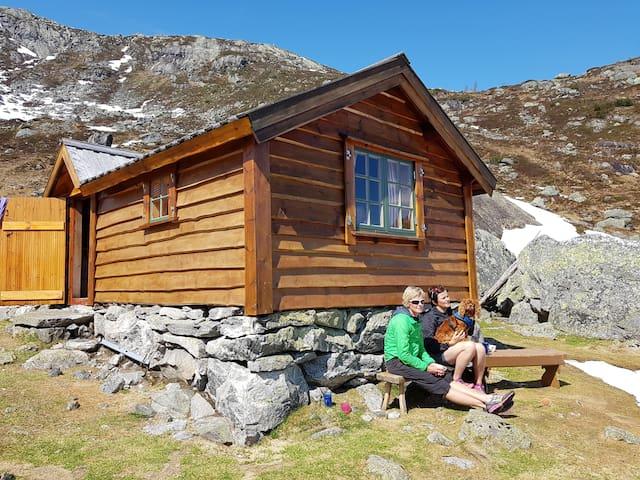 Jostedalen, Mountain cabin in Bakkedalen