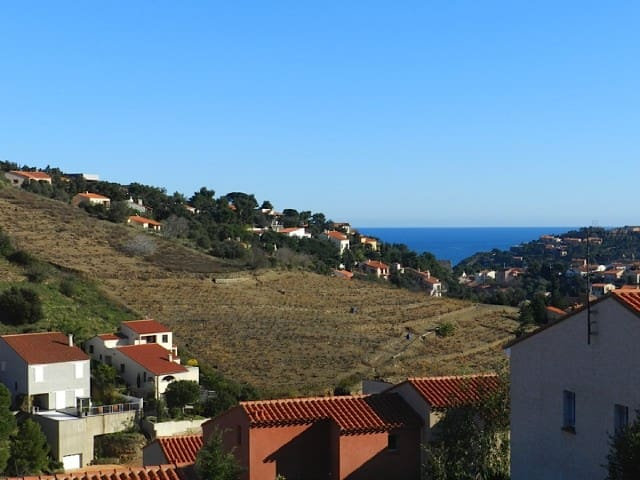 1 BEDROOM APARTMENT WITH VERY NICE VIEW - COLLIOURE - Apartment