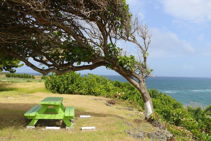 Best View In Barbados - Faraway Cottage