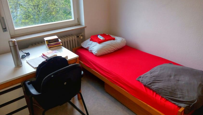 nice room near airport and direkt to citycenter - Frankfurt nad Mohanem - Byt
