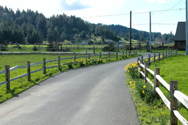 Front driveway to street. Beautiful views of the meadows and forested mountains