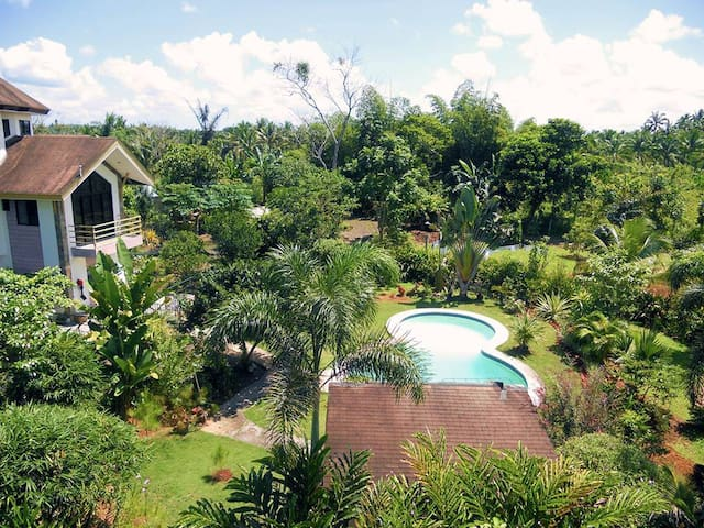 Rear gardens and pool