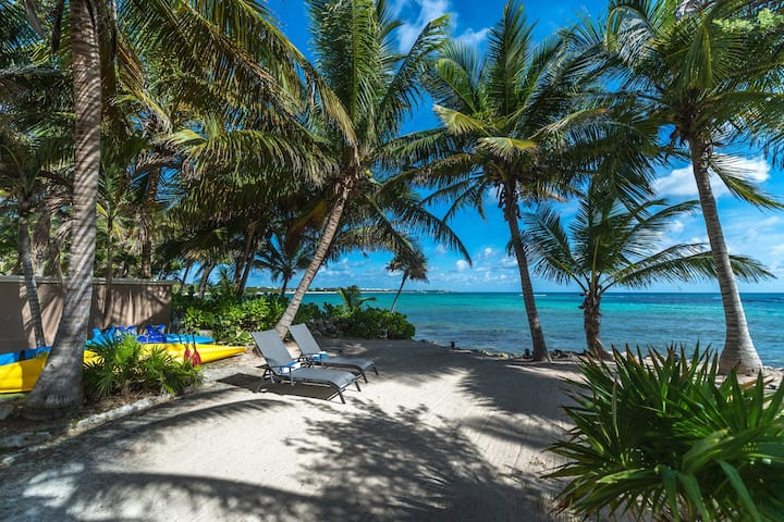 Beachfront House w Amazing Ocean Views and Kayaks!